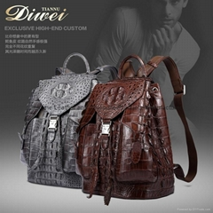 Real animal Leather back