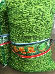pe leno mesh bag for packaging garlic