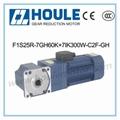 7GH Gear Reduction Motor 1