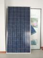 多晶硅A極太陽能電池板 電池板廠家 3