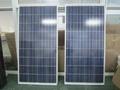 多晶硅A極太陽能電池板 電池板廠家 4