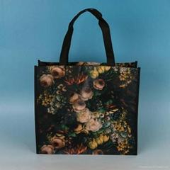 Polypropylene Non Woven Fabric Bags