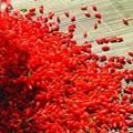 chinese goji berry 3