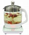 Cordless Electric Glass Health Pot 1