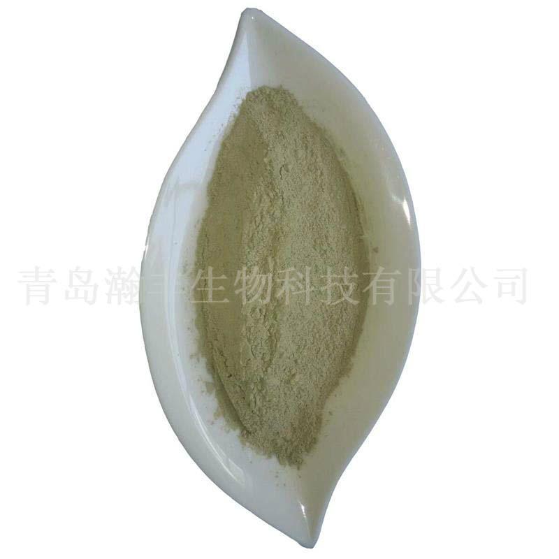kelp powder 2