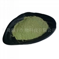 ulva powder  natural seaweed powder