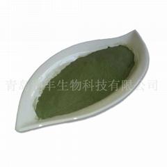 pet seaweed powder  seaweed powder
