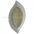 shell powder 1