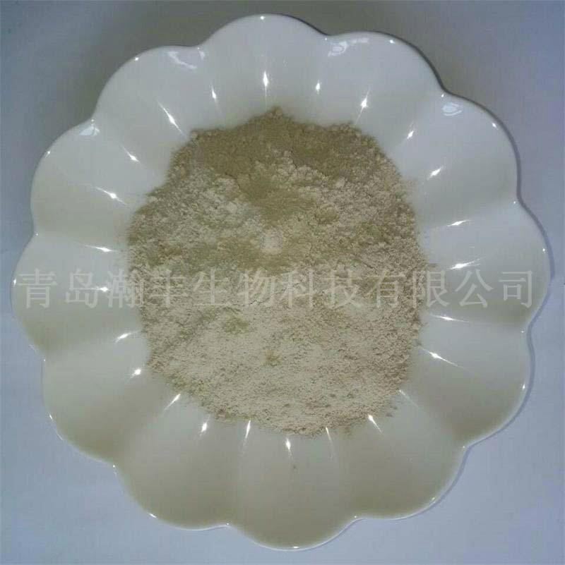 natural shell powder 3