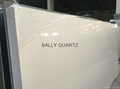 Bally Quartz-the leader in quartz