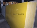 Bally Quartz Stone Surfaces