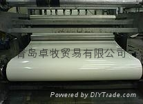 進口清糞帶 聚丙烯PP材質