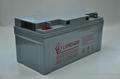 利虎廠家供應UPS不間斷電源專用12V65AH免維護鉛酸蓄電池 5
