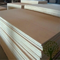 Yelintong best price commercial plywood okoume and poplar and gurjan faced 2