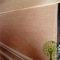 Yelintong best price commercial plywood okoume and poplar and gurjan faced 5