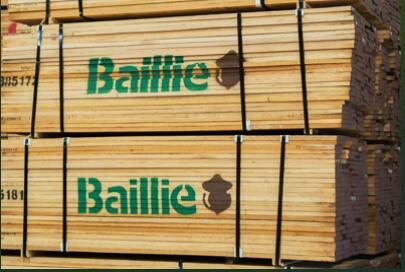 美国白橡木板材 2