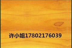 供应美国黄杨木