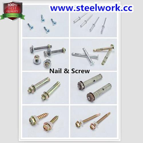 Screw & Nail for Roller Shutter Door Hardware 1