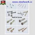 Screw & Nail for Roller Shutter Door