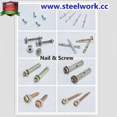 Screw & Nail for Roller Shutter Door Hardware