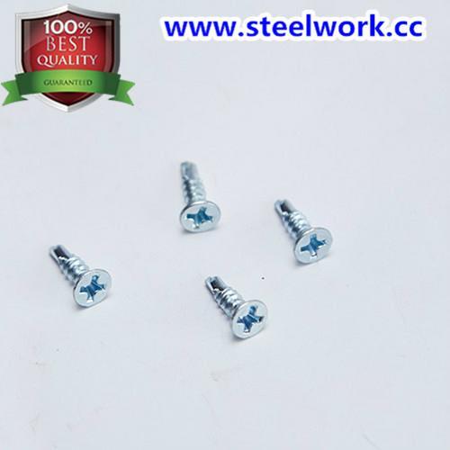Screw & Nail for Roller Shutter Door Hardware 3