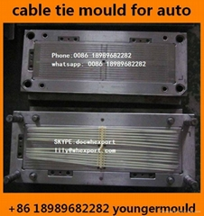 nylon cable tie injection mould for auto