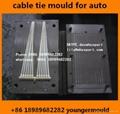 99bce71a5101 nylon cable zip tie injection mould for auto car automobile parts component  ...