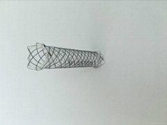 Self-expanding metallic non covered ERCP biliary stent