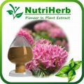 Natural Rhodiola Rosea Extract 3%
