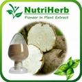 Natural Pueraria Mirifica Extract