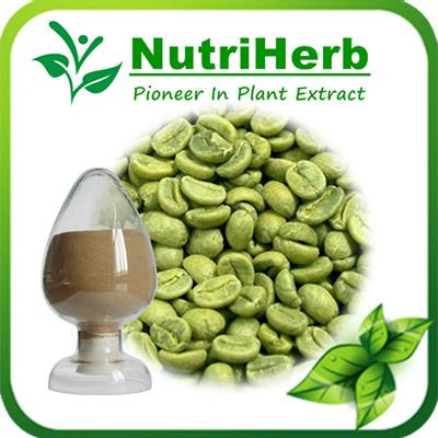 Natural Green Coffee Bean Extract 1