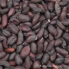 offer hand picked and selected black peanut kernel  rich in selenium from China