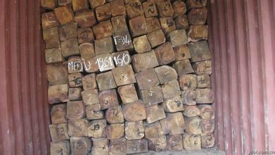 太倉木材進口報關代理 1