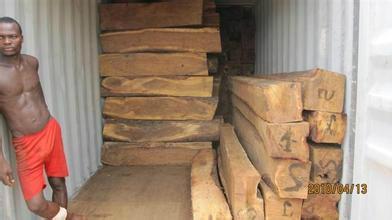 张家港木材进口报关代理 1