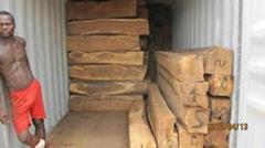 張家港木材進口報關代理