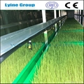 hydroponic barley grass sprout system barley grass growing ...