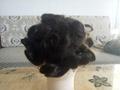 Chinese factory wholesale 100% virgin human hair men toupee men hair systems 2