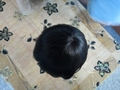 Indian Hair Super Thin Skin Invisible Knot Toupee 4