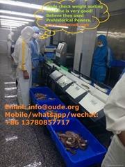 Sleeve-fish check weight sorting machine