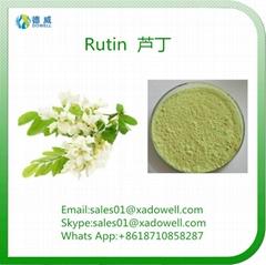 Plant Extract Powder Rutin CAS No:153-18-4 EP98%Min   NF11 95%Min   DAB 98%Min
