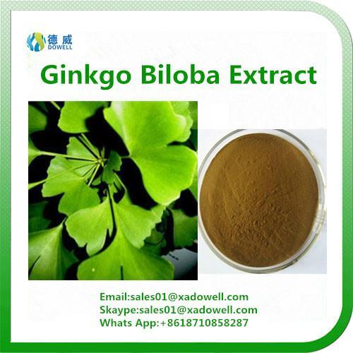 Natural Ginkgo Biloba Extract 24%Flavones 1