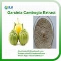 Garcinia Combogia Extract HCA (Hydrogen