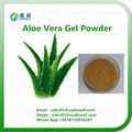 Nutritional Ingredients Aloe Vera Gel Powder 1