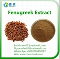 Top quality Natural Organic Fenugreek
