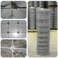 High quality grassland fence, filed farm fence