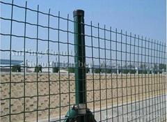 厂家直销护栏养殖用荷兰网