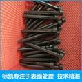 鍍鈦廠家專業加工