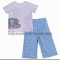 Lovely elephant appliqued set for boys -