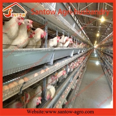 H type 5 tier chicken cage poultry cages chicken layer cage for kenya poultry fa