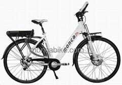 Europe Standard Electric bicycle